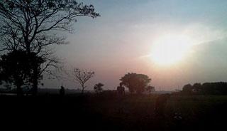 বাড়িয়া গণহত্যা: চাপা পড়া বর্বরতার শিউরে উঠা কাহিনী