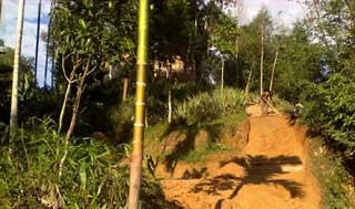 টিলা কেটে হোটেল-কটেজ, হুমকিতে পরিবেশ ও জীববৈচিত্র্য