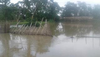 নিষিদ্ধ কারেন্ট জালে সয়লাব মৌলভীবাজারের হাওর-বিল