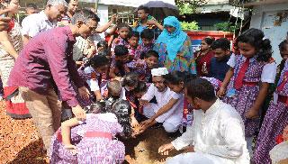 রাঙ্গামাটিতে একযোগে ২ লাখ তালের বীজ রোপণ