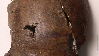 বিশ্বের প্রাচীনতম খুলি উদ্ধার, মৃত্যু সুনামিতে