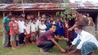 মৌলভীবাজারে সব বিদ্যালয় আঙ্গিনায় একযোগে বৃক্ষ রোপণ