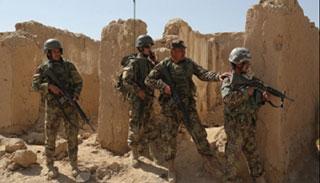 আফগানিস্তানের গজনীতে ১৬ জঙ্গি নিহত, আহত ১৩