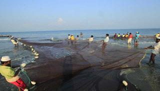 সামুদ্রে ২৩ জুলাই পর্যন্ত মাছ মৎস্য আহরণ নিষিদ্ধ