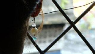 'দুলাভাই আামারে বেহুশ করে ভারতে নিয়া বেঁচে দিছিলো'