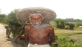 চলে গেলেন 'হরি ধান'র উদ্ভাবক হরিপদ কাপালী