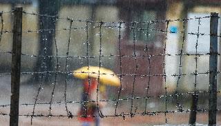 উপকূলের কাছে নিম্নচাপ : সারা দিন বৃষ্টি ঝরবে