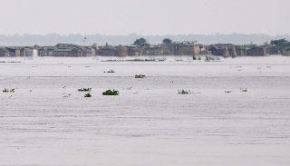 বিভিন্ন নদ-নদীর পানি ৮১ পয়েন্টের বৃদ্ধি পেয়েছে