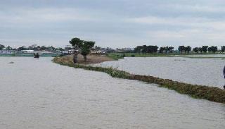বিভিন্ন নদ-নদীর ৫১ পয়েন্টে পানি হ্রাস পেয়েছে