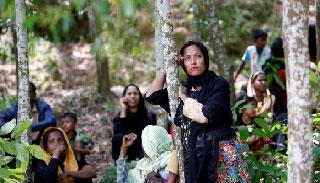 রোহিঙ্গাদের বাংলাদেশে আসা 'কমেছে' : আইওএম