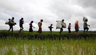 ইউএনএইচসিআর রোহিঙ্গাদের সাহায্য সরবরাহ জোরদার করছে