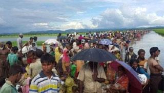 প্রতিদিন ৩০০ রোহিঙ্গা ফেরত নেবে মিয়ানমার