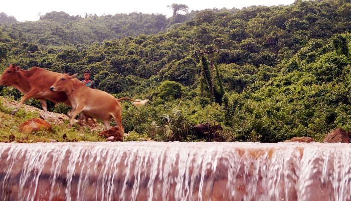 রোমাঞ্চকর ভ্রমণের নতুন গন্তব্য মেঘালয়ঘেঁষা 'লালঘাট ঝরণা'