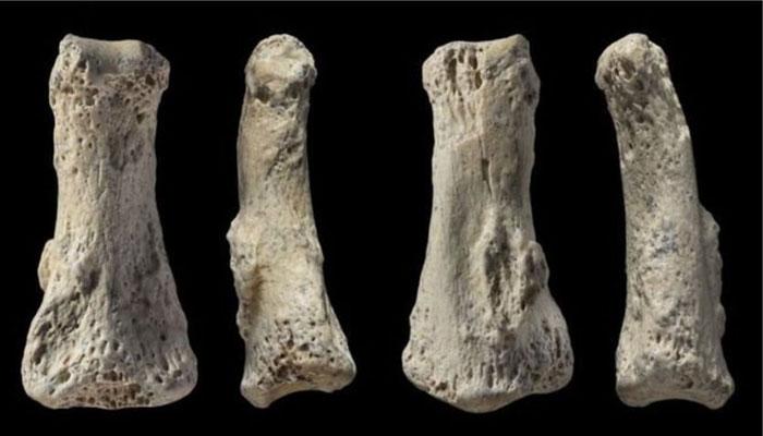 ৮৫ হাজার বছর আগে সৌদি আরবে কারা থাকতো?