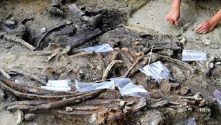 ফিলিপাইনে সাত লাখ বছর পুরনো পাথুরে হাতিয়ারের সন্ধান