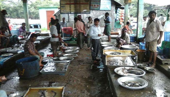 সুনামগঞ্জে বিলুপ্তির পথে মিঠা পানির মাছ