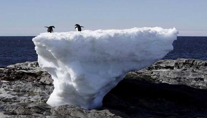 অ্যান্টার্কটিকায় সর্বোচ্চ তাপমাত্রার রেকর্ড