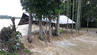 কমলগঞ্জে পানিবন্দি অর্ধশত পরিবার, হুমকিতে ঘরবাড়ি