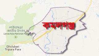 সহযোগিতা চান কমলগঞ্জে বেকার স' মিল শ্রমিকরা