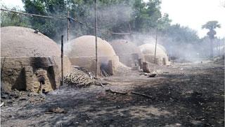 হুমকিতে জনস্বাস্থ্য : শ্রীপুরে বন উজাড় করে কয়লার ভাটা