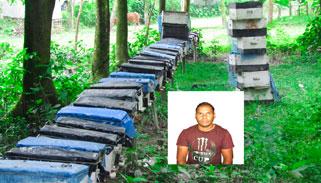 মধু চাষে স্বাবলম্বী আক্কেলপুরের আনোয়ার হোসেন