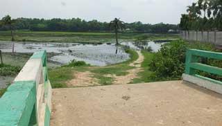 সেতু আছে সড়ক নাই: দুর্ভোগে দুই গ্রামের বাসিন্দারা