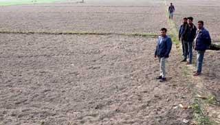 ঠাকুরগাঁওয়ে ওয়াক্ফ এস্টেটের ৪০ বিঘা জমি দখলের অভিযোগ