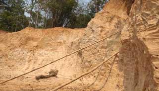 কমলগঞ্জে সাবাড় হচ্ছে পাহাড়ি টিলা:হুমকির মুখে জীববৈচিত্র্য