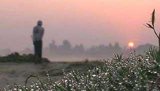 তেঁতুলিয়ায় আজও দেশের সর্বনিম্ন তাপমাত্রা