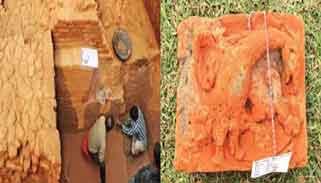 বগুড়ার ভাসুবিহারে সপ্তম শতাব্দীর বিলুপ্ত সভ্যতার সন্ধান