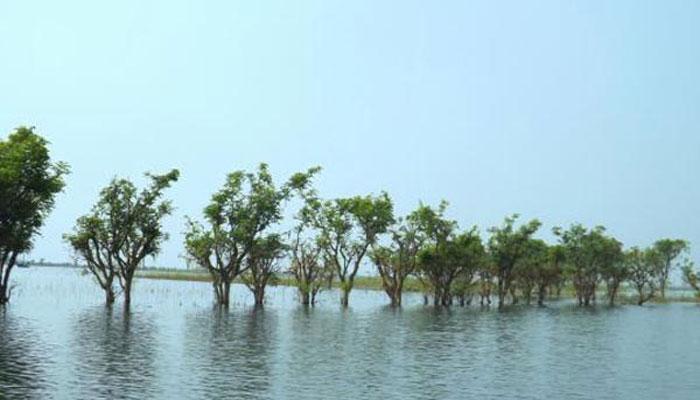 হুমকির মুখে সুনামগঞ্জের টাঙ্গুয়ার হাওর